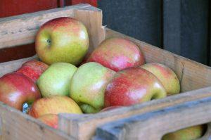 caisses à pommes en bois utilisation